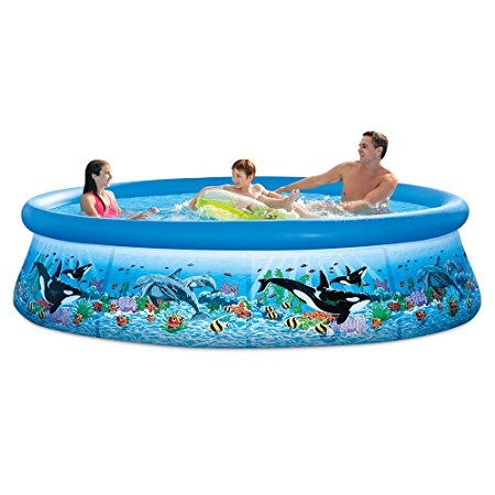 10. Intex 10ft X 30in Ocean Reef Easy Set Pool Set
