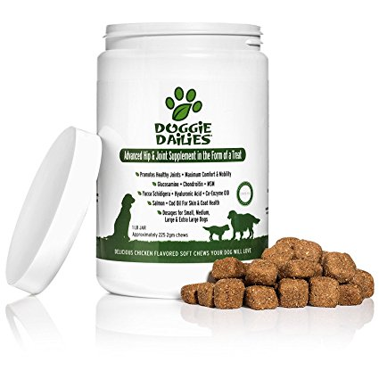 4. Advanced Hip & Joint Supplement for Dogs