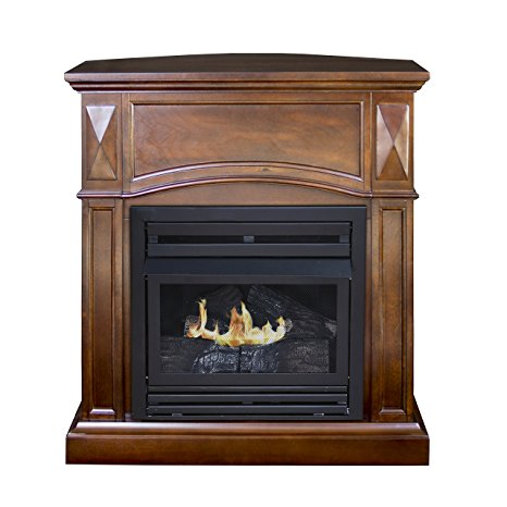 Pleasing 10 Best Gas Fireplace Stoves By Consumer Report For 2019 Download Free Architecture Designs Scobabritishbridgeorg