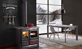 10 Best Wood Burning Stoves By Consumer Reports In 2018
