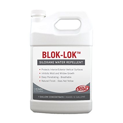 5. Rainguard International Blok-Lok Sealer
