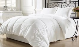 10 Best Down Comforters By Consumer Reports For 2018
