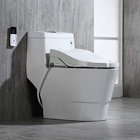 10 Best Toilets By Consumer Report For 2019 The Consumer Guide